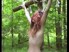 Lady and the slave in the forest tube porn video