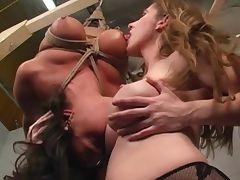 Lesbian BDSM woman in bondage tit suck breast suck smother tube porn video