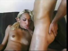 Shemales in action compilation tube porn video