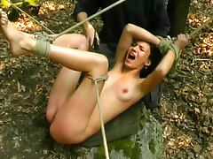 Stripped and caned in the woods tube porn video