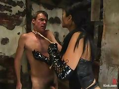 Sizzling and terrifying bitch Mika tan is on Wild Bill tube porn video