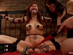 Shocking BDSM session with a lusty siren Bobbi Starr and her slave Brooklyn tube porn video