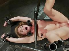 Aurora Snow gets her cunt and ass toyed hard in BDSM scene tube porn video